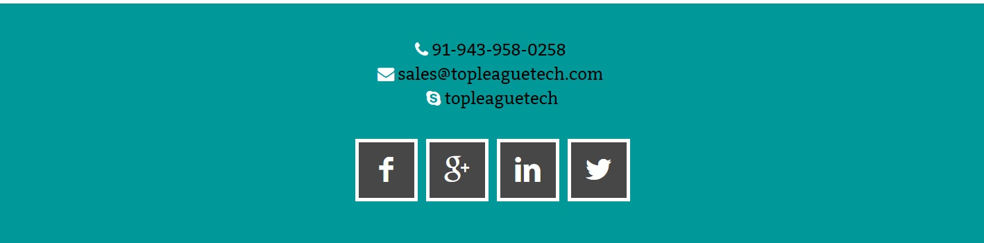 SEO friendly   Responsive Website Services  Top League